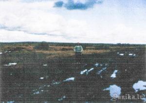 1999. gada 24. augusts. Ceļš, kas ved garām Vjatlaga krustam, sausā vasaras laikā. Pa šādu ceļu brida ieslodzītie. Foto no Benildas Ezeriņas arhīva.