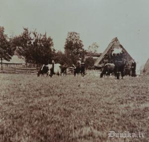 """Viļņa Roļa dzimtās mājas """"Brizgas"""" pēc kara."""